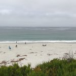 Photo de Carmel By The Sea