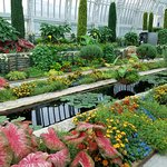 Marjorie McNeely Conservatory of Flowers at Como Park