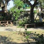 Foto de Best Western Johnson City Inn