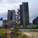 Photo de Crowne Plaza Copenhagen Towers