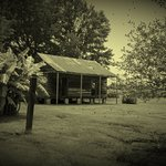 Photo of Laura: A Creole Plantation