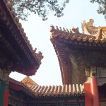 Foto de The Imperial Garden of The Palace Museum