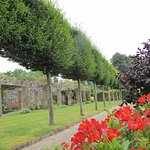 Lough Rynn Castle Estate & Gardens Foto