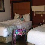 Foto de La Quinta Inn & Suites USF (Near Busch Gardens)