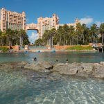 The Atlantis lagoon at 8am. Go early!