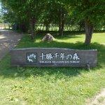 Photo of Tokachi Millenium Forest