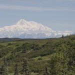 Mt.Denali from Caribou Lodge