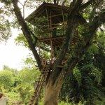 Photo de Boon Lott's Elephant Sanctuary