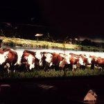 inside Cattlemen's steakhouse