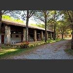 Belvedere Pineta Camping Village Foto