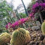 I giardini di villa Ravino