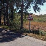 Foto de Portugal Nature Lodge