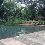 Natural pool - YS Falls