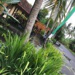 Foto de Ubud Green