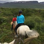 Lava Horses Photo