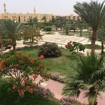 Desert Rose Resort Photo