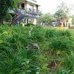 Photo de Wild Elephant Eco Friendly Resort