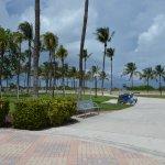 Walkway towards the beach