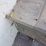 More cigarette butts on the low wall which separates 1 exterior door from another.
