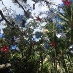 Royal Hawaiian Center Foto