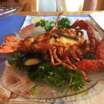 Lobster Savannah