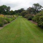 Herbaceous border, Ness Gardens