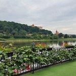 Blick von der Terrasse über die Elbe auf Pirna