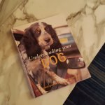 Dog friendly - complimentary reading material in the lobby
