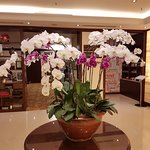 Hilton Garden Inn Hanoi Photo