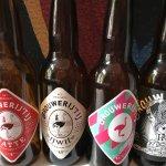 Bottles from Amsterdam