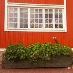 Photo of Carl Larsson-garden