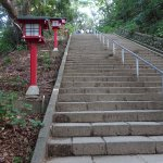 On trail number 1, you will find many improvements that make the walk convenient.