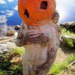 pumpkin girl at Halloween