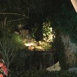 Foto Il Giardino di Anngelica