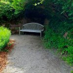 Well placed bench for a rest or read a book
