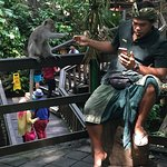 Bali Culture and Nature tour