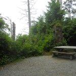 Photo de Green Point Campground