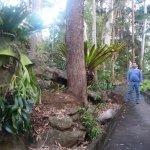 Joseph Banks Native Plants Reserve