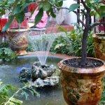 Beau jardin agrémenté d'un bassin