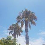 Photo de Puerto Caleta