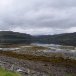 View from the B&B (Loch Carron)