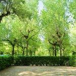 Photo of Parco delle Piscine