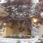 Photo de The Holiday Inn Niagara Falls