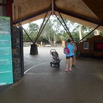 ArghyaKolkata Auckland Zoo-4
