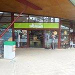 ArghyaKolkata Auckland Zoo-6