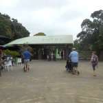 ArghyaKolkata Auckland Zoo-7