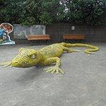 ArghyaKolkata Auckland Zoo-9