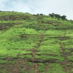 the adjacent hill