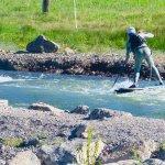 Whitewater paddler