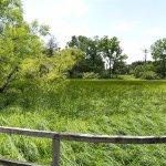 Prairie Panarama